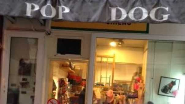 Nice - Pop Dog