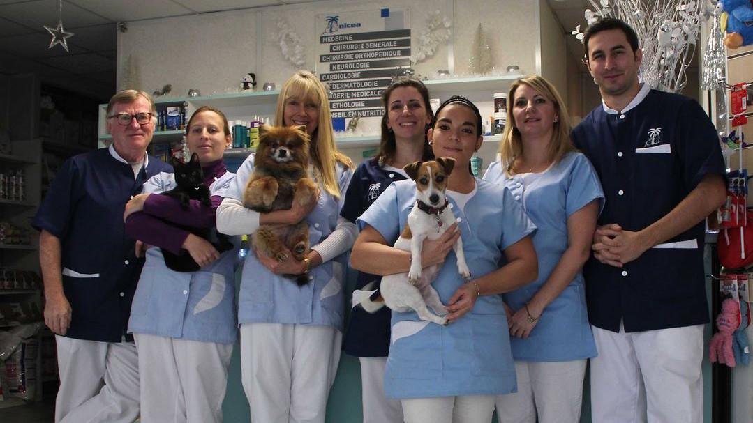 Nice - NICEA Clinique Vétérinaire