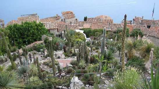 Nice - Jardin Exotique d'Eze