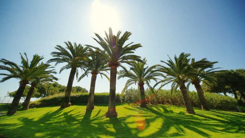 Nice - Jardin Botanique